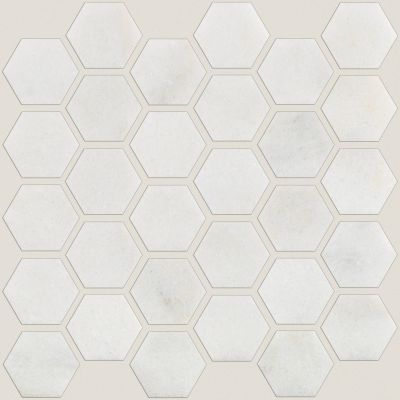 Shaw Floors Ceramic Solutions Boca Hexagon Polished Mosaic Pearl 00101_CS80M