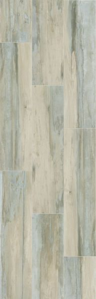 Shaw Floors Ceramic Solutions Arcadian Scene Range 00250_CS81W