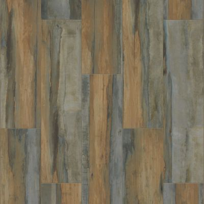 Shaw Floors Ceramic Solutions Arcadian Scene Tillage 00750_CS81W