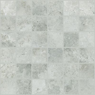 Shaw Floors Ceramic Solutions Contour 2×2 Mosaic Evolve 00500_CS85H
