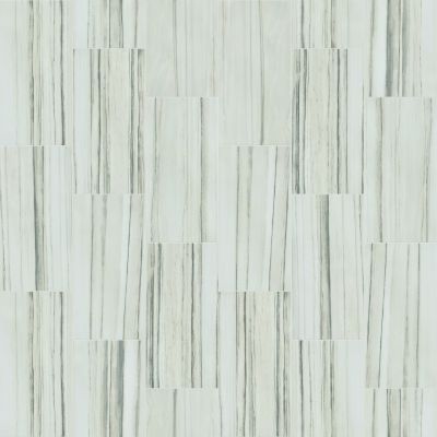 Shaw Floors Ceramic Solutions Casino 12×24 Matte Zebrino 00155_CS87Z