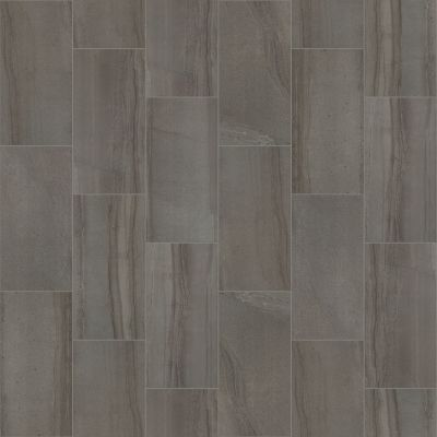 Shaw Floors Ceramic Solutions Coliseum 12×24 Matte Coal 00550_CS91Q