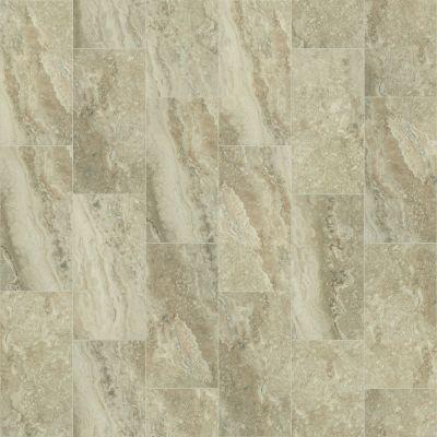 Shaw Floors Ceramic Solutions Veneto 12×24 Ginger 00700_CS95W