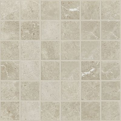 Shaw Floors Ceramic Solutions Oasis Mosaic Light Grey 00500_CS97Q