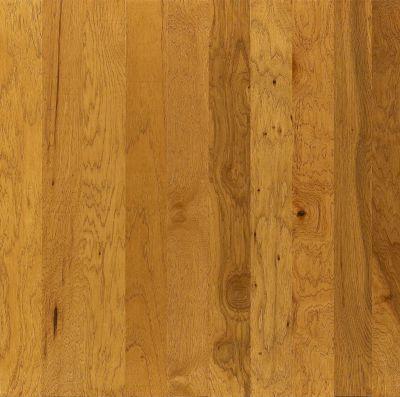 Shaw Floors Shaw Design Center Yellowstone Buckskin 00215_DC156