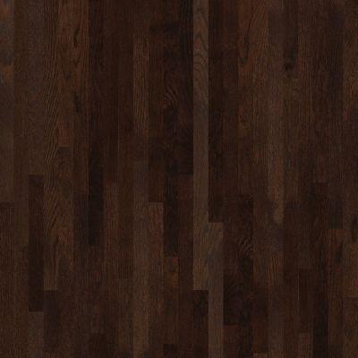 Shaw Floors Shaw Design Center Kinship 2.25 Coffee Bean 00958_DC199