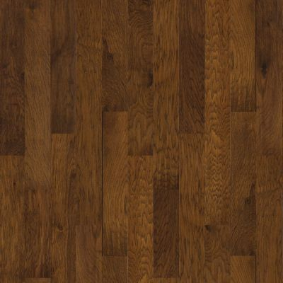 Shaw Floors Shaw Design Center Mount Battie Western Sky 00896_DC213