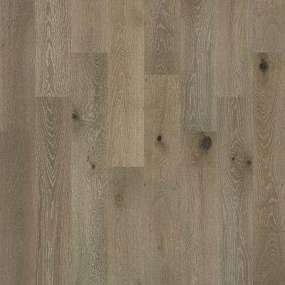 Shaw Floors Shaw Design Center Buckingham Oak Palisade 05022_DC240