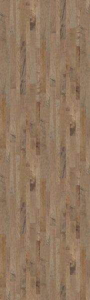 Shaw Floors Shaw Design Center Carillon Maple Highway 00550_DC261