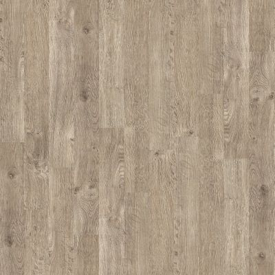 Shaw Floors Shaw Design Center Eastborne Limed Oak 00507_DC359
