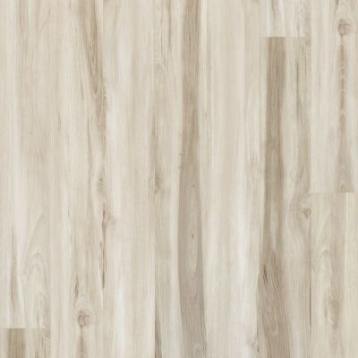 Shaw Floors Dr Horton Arabesque Pla + Mandorla 00118_DR013
