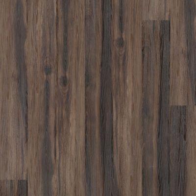 Shaw Floors Dr Horton Arabesque Pla + Nocciola 00702_DR013