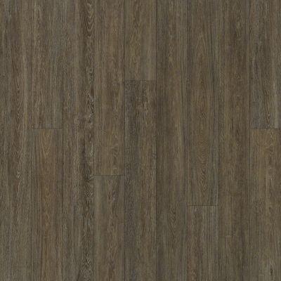 Shaw Floors Dr Horton Arabesque Pla + Miletto 00771_DR013