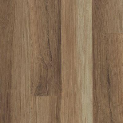 Shaw Floors Dr Horton Ballantyne Plus Click Hazel Oak 00762_DR036
