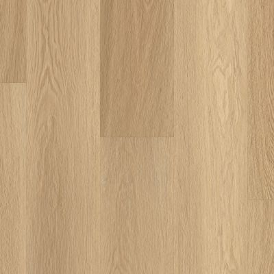 Shaw Floors Dr Horton Ballantyne Plus Click Castaway 07087_DR036