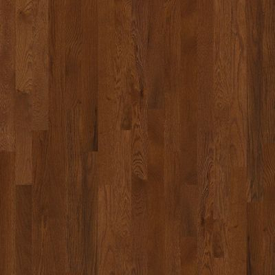 Shaw Floors Dr Horton Blairsville 3.25 Saddle 00401_DR650