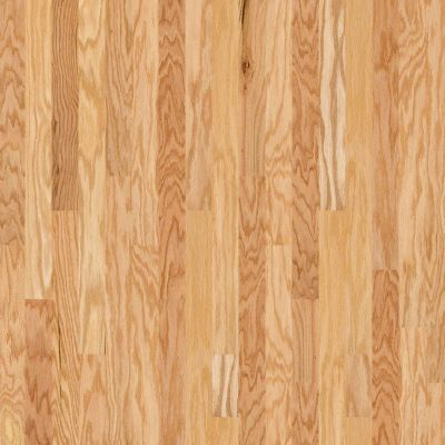 Shaw Floors Dr Horton Ann Arbor 3.25 Rustic Natural 00135_DR667