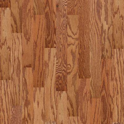 Shaw Floors Dr Horton Ann Arbor 5 Gunstock 00780_DR668