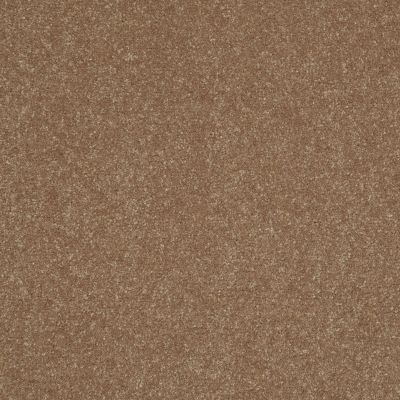 Shaw Floors Secret Escape I 15′ Gingersnaps 00201_E0049