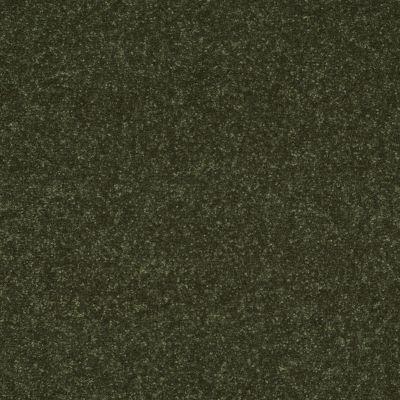 Shaw Floors Secret Escape II 15′ Passion Vine 00303_E0051