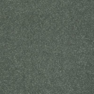 Shaw Floors Secret Escape III 12 Spruce 00311_E0052