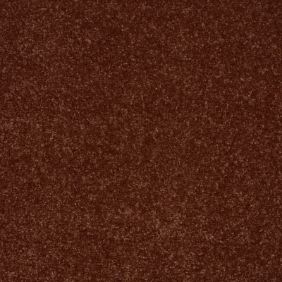 Shaw Floors Secret Escape III 12 Cinnamon Roll 00600_E0052
