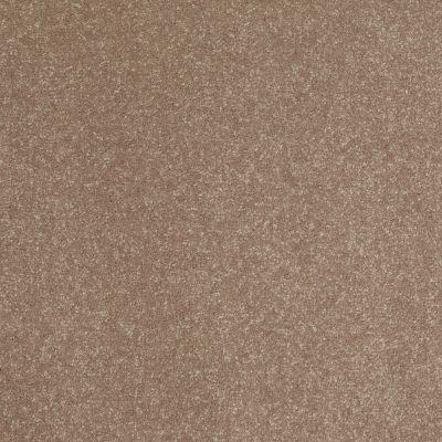 Shaw Floors Secret Escape III 15′ Wheat Bread 00702_E0053