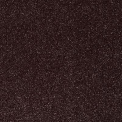 Shaw Floors Secret Escape III 15′ Dark Chocolate 00716_E0053