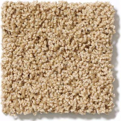 Shaw Floors Lonestar Acorn 00223_E0113