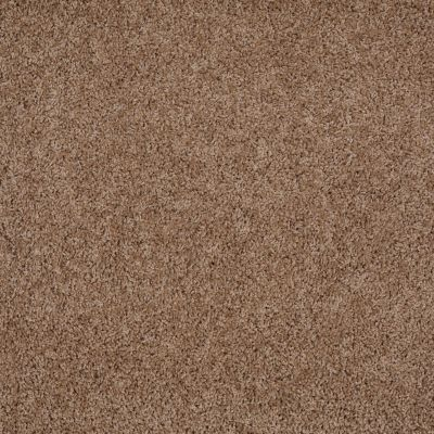 Shaw Floors Lonestar Twill 00700_E0113