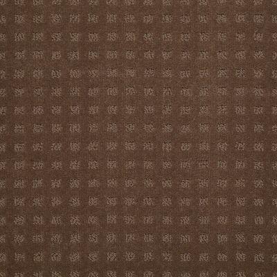 Shaw Floors Nottingham Driftwood 00704_E0116