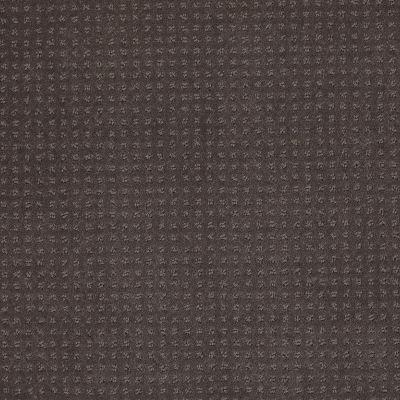 Shaw Floors Westminster Steel Beam 00502_E0117