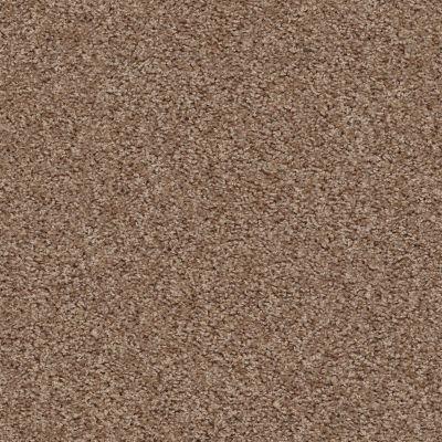 Shaw Floors One Over All Sierra Hills 00702_E0120