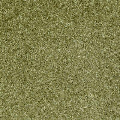 Shaw Floors Dreamin' 12′ Spring Valley 00300_E0121