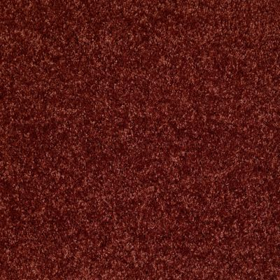 Shaw Floors Dreamin' 12′ Sienna 00600_E0121