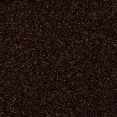Shaw Floors All Star Weekend II 15′ Coffee Bean 00705_E0142