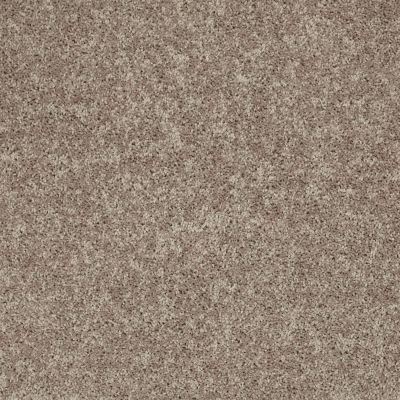 Shaw Floors All Star Weekend II 15′ River Slate 00720_E0142