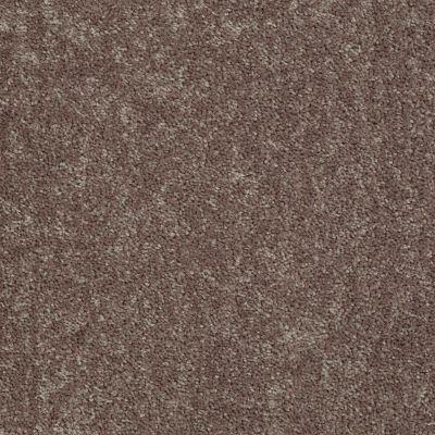 Shaw Floors All Star Weekend I 12′ Driftwood 00703_E0143