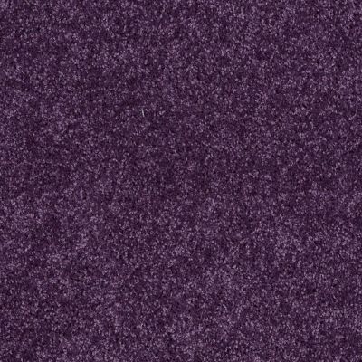 Shaw Floors All Star Weekend I 12′ Grape Slushy 00931_E0143