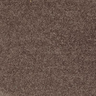 Shaw Floors All Star Weekend II 12′ Molasses 00710_E0144