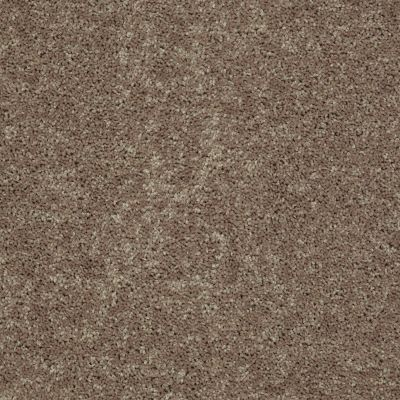 Shaw Floors All Star Weekend III 12′ Hearth Stone 00700_E0145