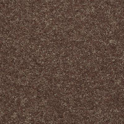 Shaw Floors All Star Weekend III 15′ Cattail 00702_E0146