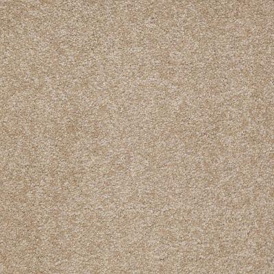 Shaw Floors Magic At Last I 12′ Cardboard 00245_E0200