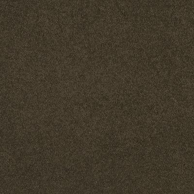Shaw Floors Magic At Last I 12′ Sprout 00344_E0200