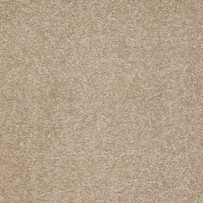 Shaw Floors Magic At Last II 12 Cardboard 00245_E0201