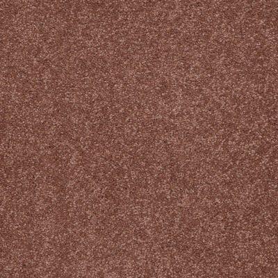 Shaw Floors Magic At Last II 12 Mocha 00706_E0201