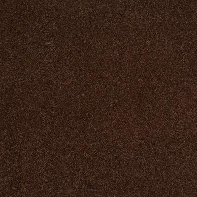 Shaw Floors Magic At Last III 12′ Fudge Brownie 00711_E0204