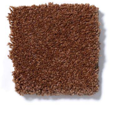 Shaw Floors Magic At Last Iv 12 Copper 00602_E0205