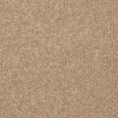 Shaw Floors Moonlight Iv Natural Wood 00108_E0209