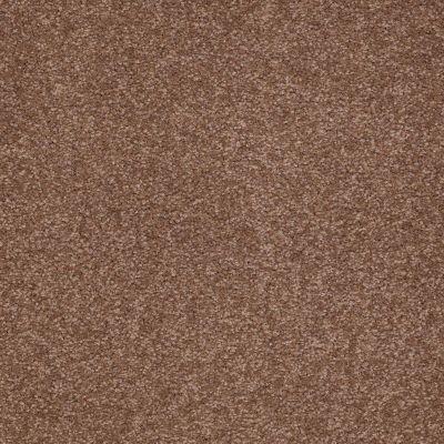 Shaw Floors Magic At Last II 15′ Thoroughbred 00244_E0235
